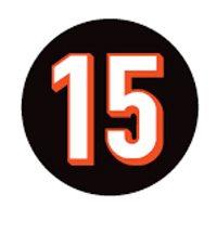 Chris Henry #15