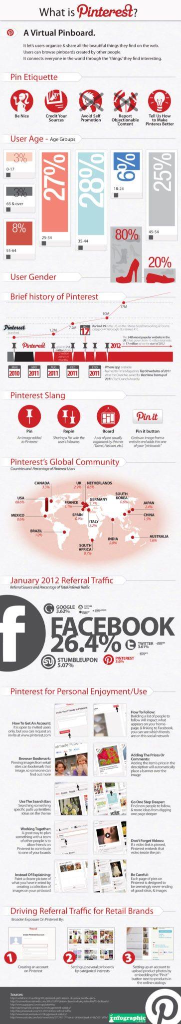 Pinterest Infographic